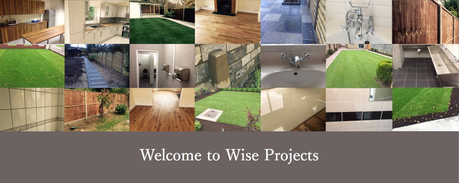 Wise Projects